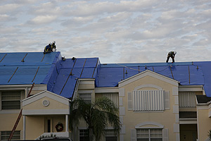 Fema Blue Tarp Roof Program 6