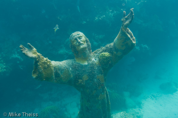 Key Largo Florida Coral Reef in Key Largo Florida